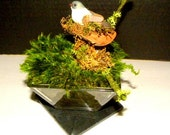 Preserved Mood Moss Open style Terrarium and mushroom Bird in a Glass and soapstone Centerpiece-Wedding Decor