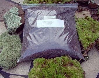 Terrarium soil-Organic soil for moss-Sandwich bag full