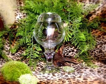 Terrarium vase-Pedestal Style Glass terrarium-Round globe vase with lid-Miramo moss ball vase