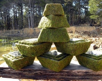 Small Square Moss Basket for weddings-Bonsai-Orchid Baskets-Soft green preserved moss