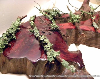 Tree Branch-Lichens-5+ extra pieces of Wild Leafy Lichens on mini branches plus a larger section of lichen bark