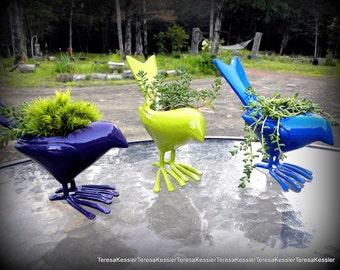 Blue Bird Moss or sedums Metal Bird planter-Crow about this one to your friend-Bird Sculpture Planters