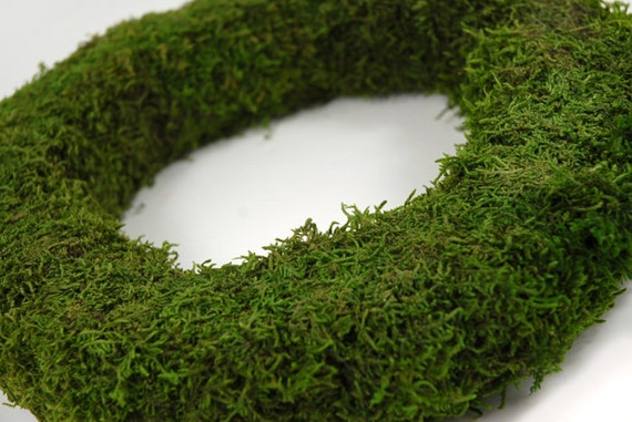 "Moss Wreath-12"" Moss covered wreath-Preserved Moss-Wedding wreath-Wall decor"