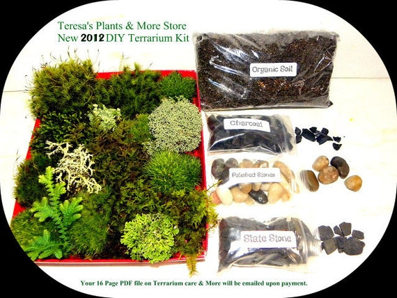 DIY New Live Moss ,mushroom and lichen Terrarium Kit  FREE 17 page  Book included -5 types of Moss-Peacock Spikemoss included