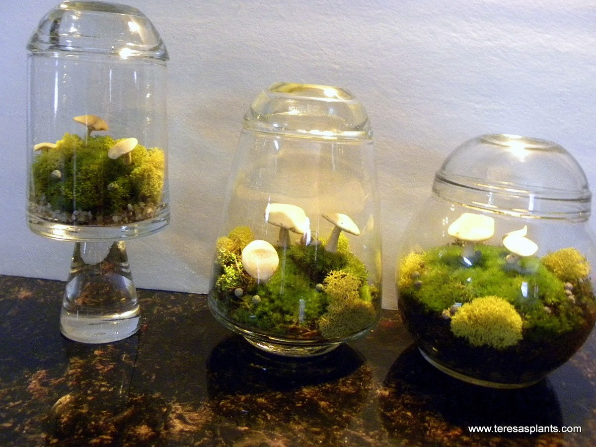 Glass Wedding Invitations with luxury invitations ideas