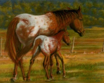 Side By Side - ACEO Giclee Print - Open Edition - Appaloosa