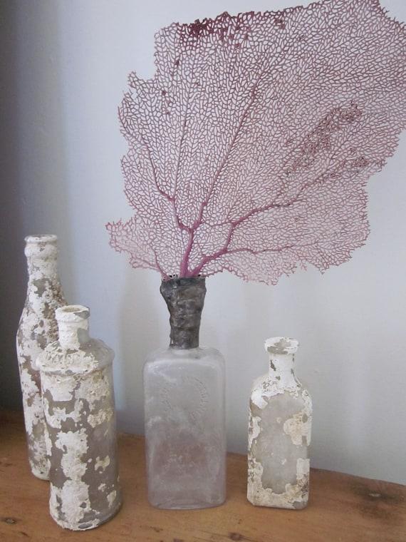 Lavender sea fan sea life sculpture seashell bottle