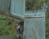 Blue Fence - Czech Republic - 4 x 6 fine art photograph