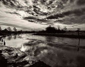 "Edison Slough -13""x19"" Giclée Fine Art Monochromatic  Photograph with 1/2"" border printed on Moab Entrada RAG 300 gsm NW"