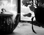 Tea Pot with Prayer Plant (Still Life) 8x12 Fine Art Black and White Photograph