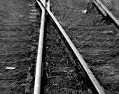 Indecision - 8x12 Fine Art Photograph