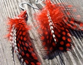Red, Black, and White Feather Earrings wrapped with red wire