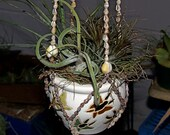Hanging Air Plant Party Pot, butterfly design