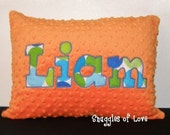 Boys Personalized Pillow - Minky Pillow - Blue and Green - PERSONALIZED with YOUR NAME - Custom Made (12x16)