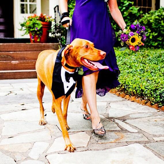 Dog Tuxedo Bow Tie Wedding Special Event