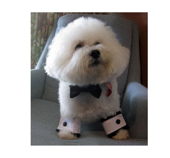 Dog Bow Tie and Cuffs Set Black Satin Wedding Formal Wear