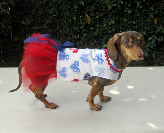 Harness Dog Dress Red White Blue Hearts