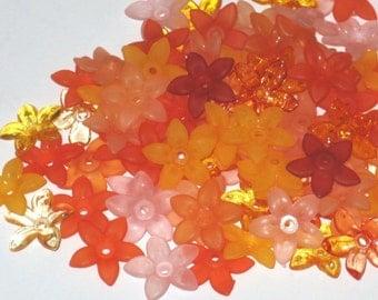 40 Acrylic Flower Beads Star Flower Beads Mango Madness