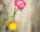 A Pretty Pair - 8x10 Photo Print