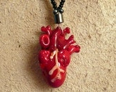 Anatomical Glass Heart with Secret Scroll and Black Bead Finish