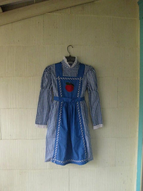 VINTAGE 70s gingham dress apple country lady mini