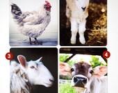 Cards with a farm animal theme - choose 5