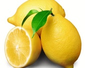 Lemon Fragrance Oil 1 oz.
