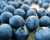 Blueberry Fragrance Oil 1 oz. Sweet and Fruity