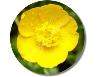 Buttercup Flower Round Mousepad