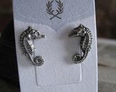 Shiny Little Seahorse Earrings