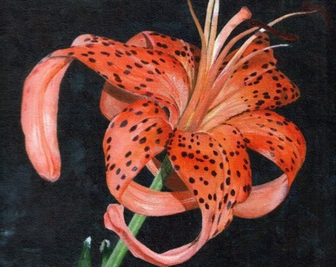 A Blooming Tiger Lilly, Original Acrylic Painting By Huiyi Tan