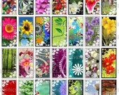 Funky Flowers - Digital Collage Sheet - 1x2 inch rectangles Great for Bamboo and Tile Pendants - Buy 2 Get One FREE