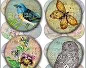 Vintage Birds Flowers and More 2 - Digital Collage Sheet - 1.5 x 1.5 inch Circles  - Great for Round Wood Pendants