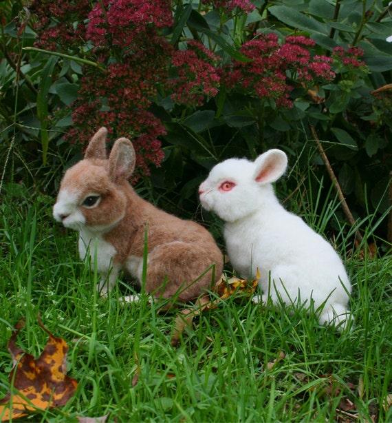 OOAK Needle felted Alpaca Life Size Baby Bunny Rabbit Poseable Tan & White Free shipping