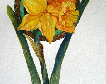 Transparent Watercolor - Sweet Yellow Daffodils