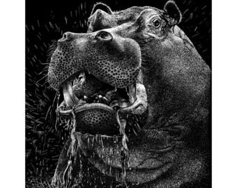 Hippo Scratchboard (Print)
