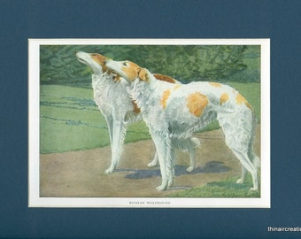 1919 Russian Wolfhound Dog Vintage Print