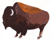 Buffalo 5x7 Print