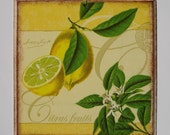 Decoupaged picture of yellow, juicy citrus fruit of LEMON, with green leaves - great home decor gift idea - concaved edges - retro charm