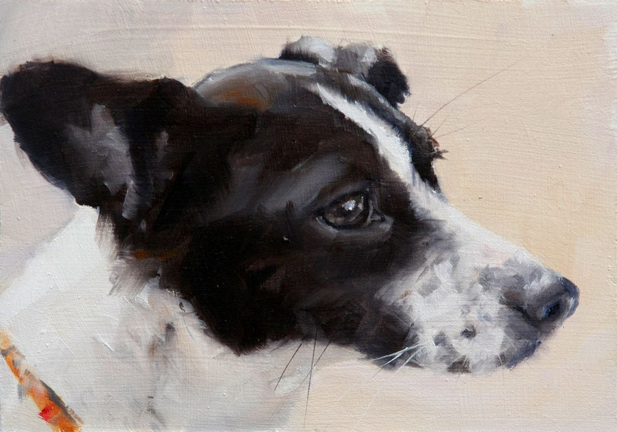 Black and White Jack Russell Terrier Mix Profile Painterly