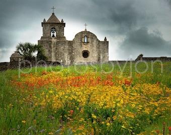 Goliad in Spring -Texas Wild Flowers Landscape- signed original photograph - , Award Winner