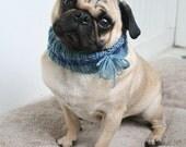 Custom Snuggly Pug Neck Warmer