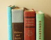 Vintage Seafoam Green, Blue, Red and Tan Books