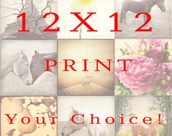 12x12 inch Print  Your Choice