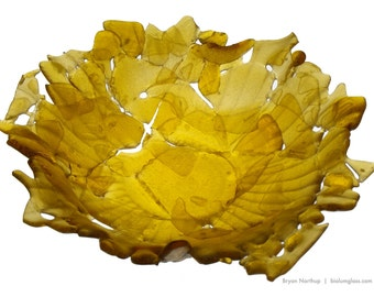 SALE - Broken Bottle Bowl - Light Amber