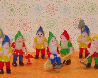 Garden Gnomes Cake Toppers    (7 pc set)