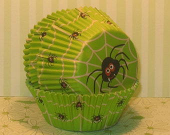 Lime Green Spider Cupcake Liner  (40)