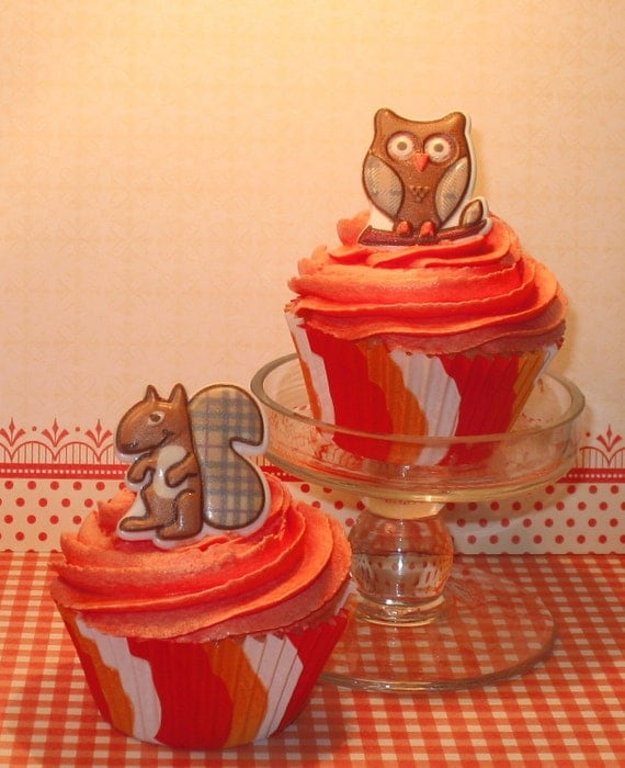 Autumn Harvest Squirrel and Owl Cupcake Ring Toppers  (13)  Last Pkg