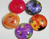 Glass magnets with flower photos, home decor, round dome magnetic fridge art, viola, love in the mist, daisy, rose
