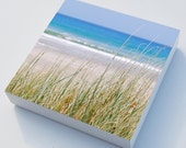 Beach grass photo blocks x 3 beach art - home decor, beach sea grasses wall art